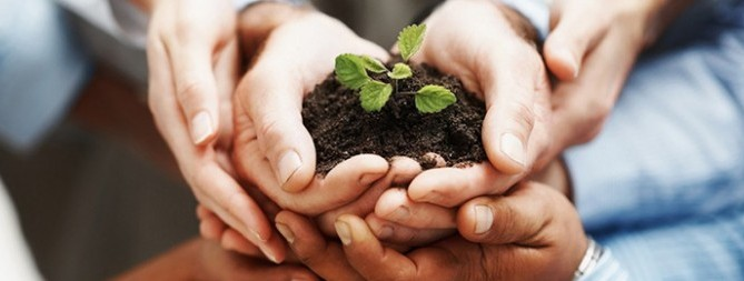 serpasat jardinereria mantillo abono tierra